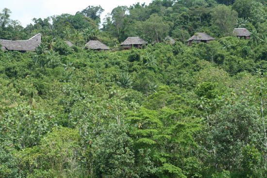 View back at Lodge from the Karawari River