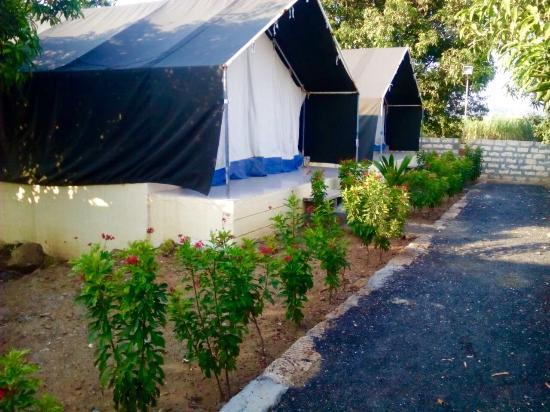 Dwarkadhish Resort Eco tents & Eco tents - Picture of Dwarkadhish Resort Sasan Gir - TripAdvisor