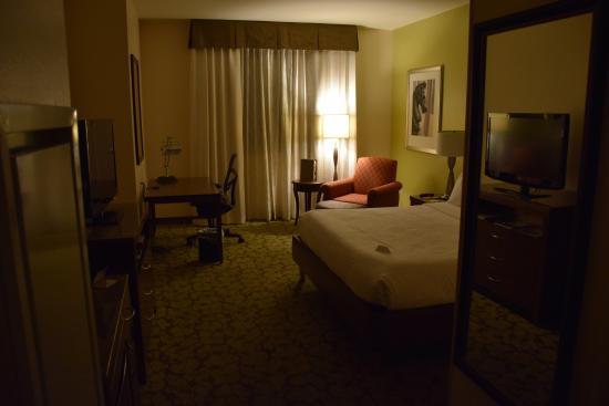 Hilton Garden Inn New Orleans French Quarter/CBD: Room