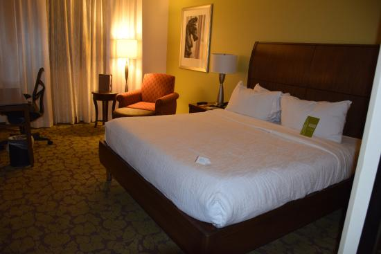 Hilton Garden Inn New Orleans French Quarter/CBD : Bed and chair