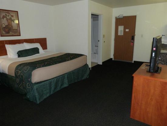 Oak Tree Inn: King bed