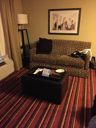 Homewood Suites by Hilton Austin / Round Rock : Apartamento/sala