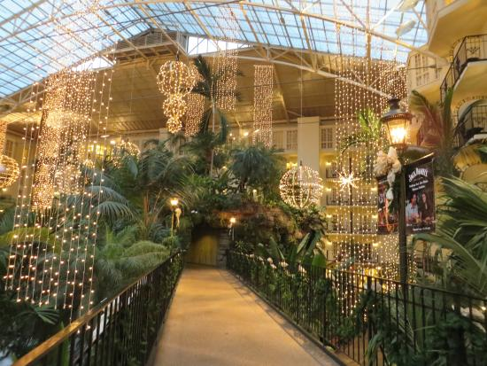 Opryland Christmas.Christmas Lights Picture Of Gaylord Opryland Resort