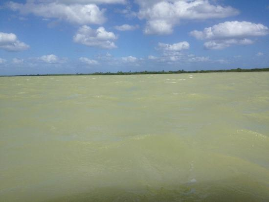 Espacio Natura: this is how the lagoon looks