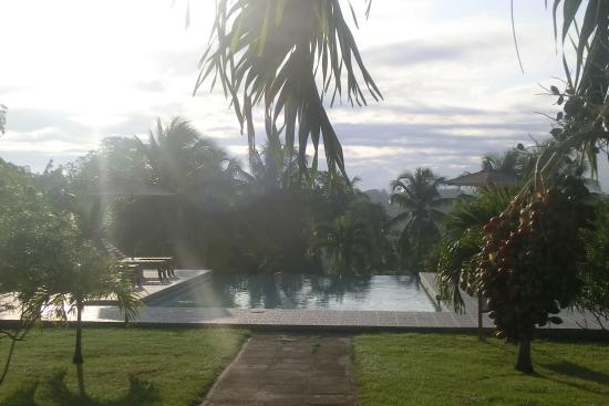 ويندي هيل ريزورت: pool view in the morning