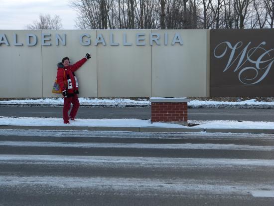 Walden Galleria Mall : Welcome!