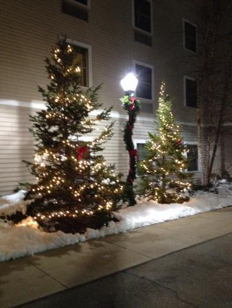 Hampton Inn & Suites North Conway : Christmas Decorations