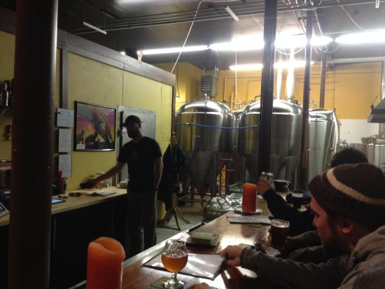 Mountain Toad Brewing: Inside Tap Room