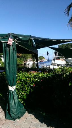 The Buzzard's Roost: View of the marina