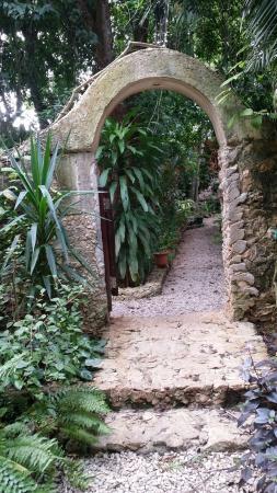 Casa Quetzal: La entrada al jardín.