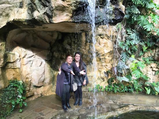 San Antonio Botanical Garden: Beautiful Waterfall