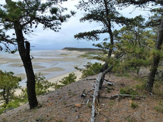Great Island Trail: View from the top