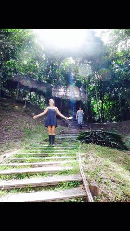 Refugio Altiplano Ayahuasca Retreats: Stairway to the rest of your life