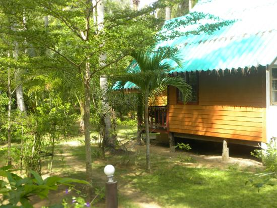 Sayang Beach Bungalows: Side view from bungalow 205