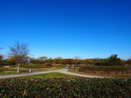 Kokuei Kisosansen Park, Wild Nature Plaza