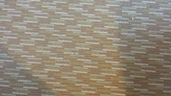 Hilton Garden Inn Gainesville : Dusty Carpet