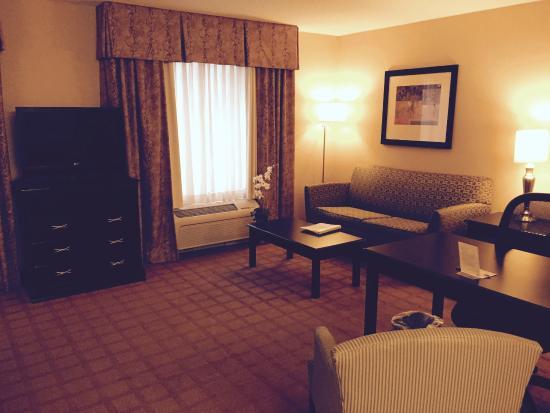 Hampton Inn & Suites Chicago-Saint Charles: Living Room