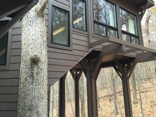 Butterfly Gap Retreat: Looking up at the bedroom-