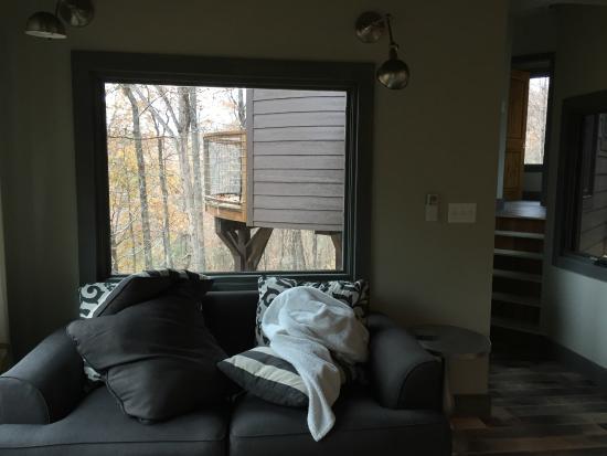 Butterfly Gap Retreat: living room