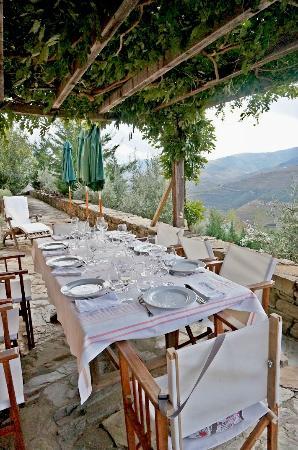 Quinta do Vale Dona Maria : Lunch Area