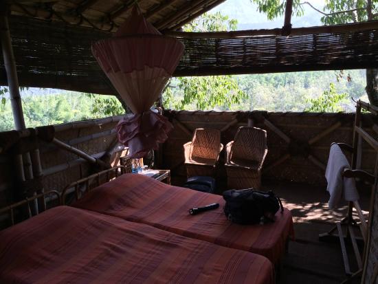 Jungle Retreat : Inside the treehouse