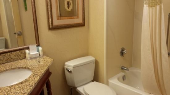 Hampton Inn Atlanta - Northlake: Bathroom