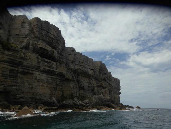 Jervis Bay Wild Cruises: Pt  Perpindicular cliffs