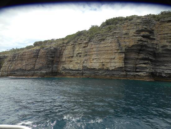 Jervis Bay Wild Cruises: Cliffs
