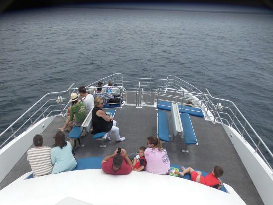 Jervis Bay Wild Cruises: Top Deck