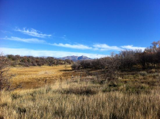 Blue Lake Ranch : Scenery of the property