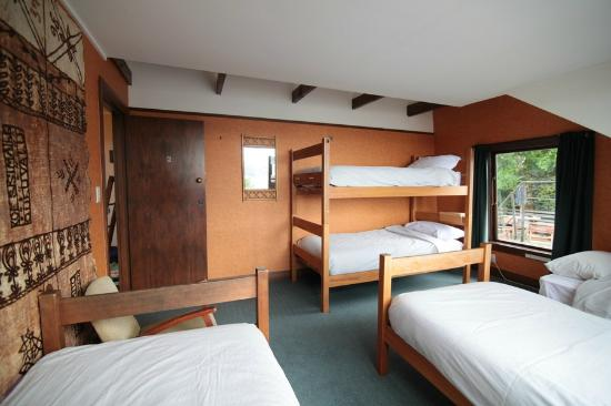 Manor House Backpackers: 5 Bed Dorm
