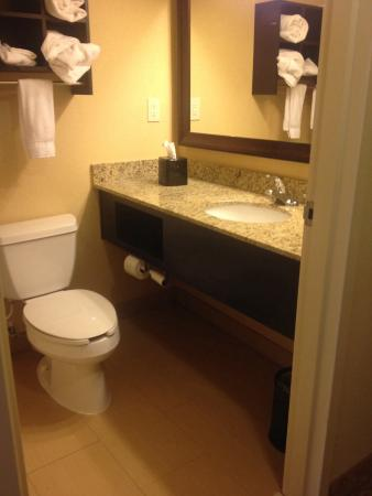 Country Inn & Suites By Carlson, Anderson: Bathroom