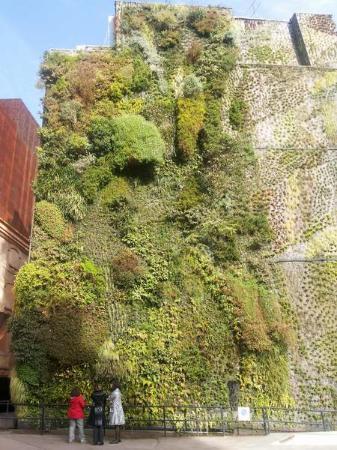 Jardin vertical le jour foto de caixa forum madri for Jardin vertical caixaforum madrid