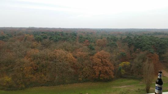 Sheraton Frankfurt Congress Hotel : Room view to the forest - very relaxing