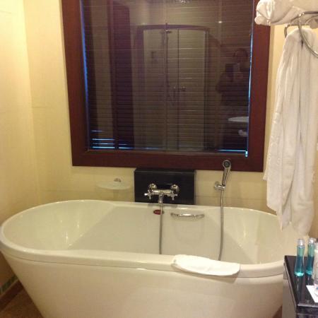 Grand Pacific Sovereign Resort & Spa : Tub