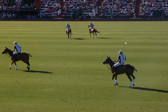 Campo Argentino de Polo: los jugadores