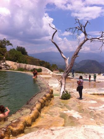 Foto de hierve el agua oaxaca albercas naturales for Albercas naturales