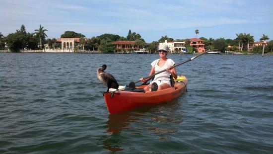 Sea Life Kayak Adventures: a passenger