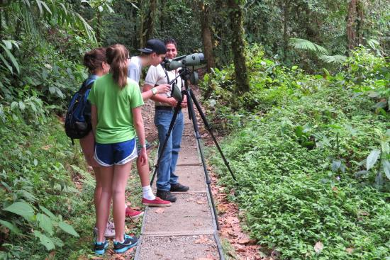 Arenal Observatory Lodge & Spa: Trails at Arenal Observatory Lodge