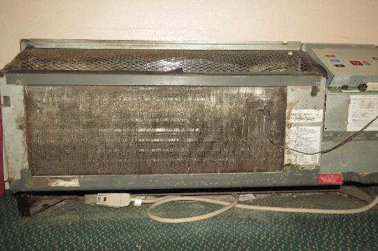 Regency Inn: mold under filter on air conditioning unit