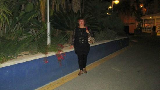 Terralta Apartamentos Turisticos: У отеля(ноябрь,всё в цвету)