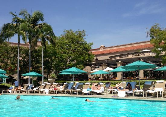 California history picture of the langham huntington - Salt water swimming pools los angeles ...