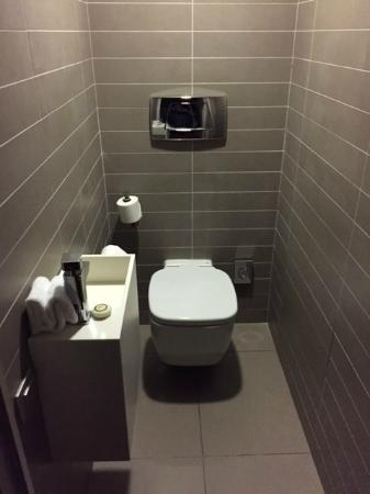Pullman Toulouse Centre: WC