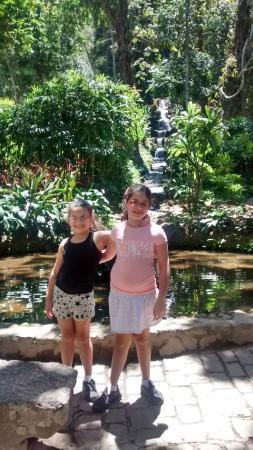 Rio Brazil Tour: Jardim Botânico