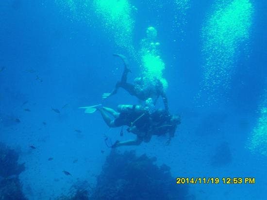 TUI Magic Life Sharm el Sheikh: in sea