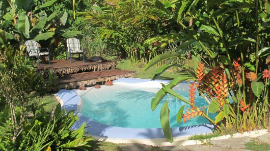 Les Cottages de Bellevue Ecolodge are ready to welcome you for the summer holidays