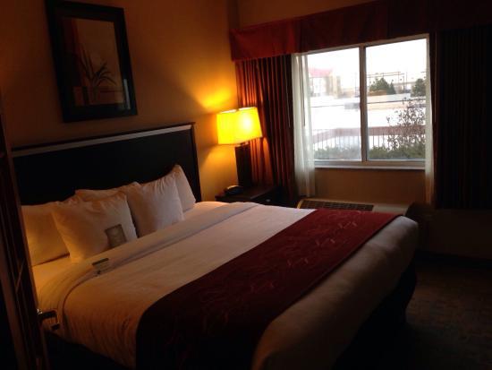 Comfort Suites Denver Tech Center : Bed