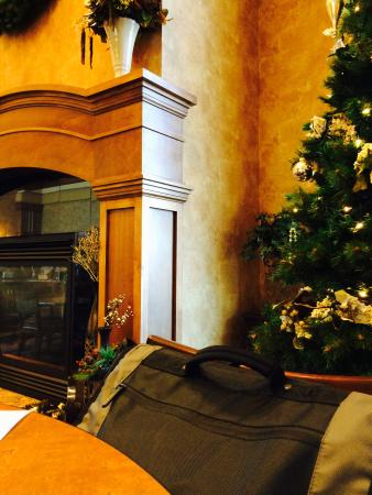 Sioux Falls ClubHouse Hotel & Suites: Fireplace