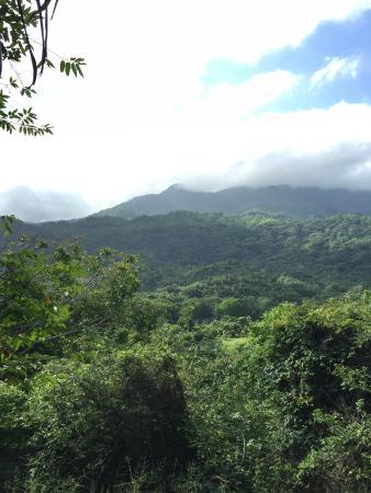 San Rafael - Tourist Inn in Tayrona: View from our cabana