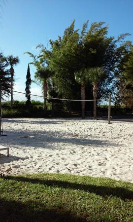 Volleyball Court Near Pool Picture Of Omni Orlando